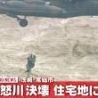 鬼怒川決壊洪水被害における犬たち