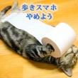 JR東日本の歩きスマホ防止