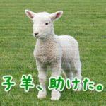 勇敢な二人の男たちが溺れている子羊を助けた!うまかった!