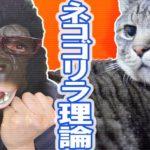脅威の「ネコゴリラ理論」