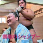 お相撲さんが使っているシャンプー