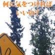 アラスカの標識