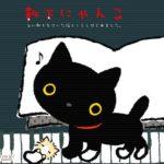 ハリケーンを生き延びた「靴下セーター」の子猫が可愛すぎる