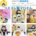 コスプレ猫のマロさんが料理を紹介するInstagramがいい!
