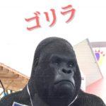 ゴリラ36,000円