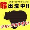 秋田のクマがデカすぎる! 比べるとよく分かります