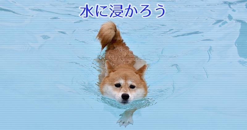 水に浸かろう