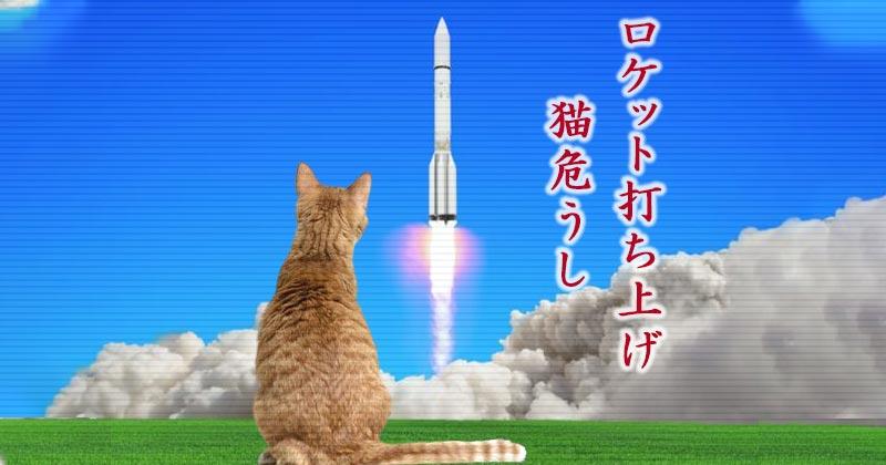 ロケット打ち上げで猫が取り残された