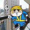 猫氏「この子はワイが守る!」優秀な自宅警備員さん