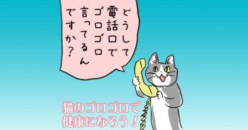 猫のゴロゴロ音で健康に