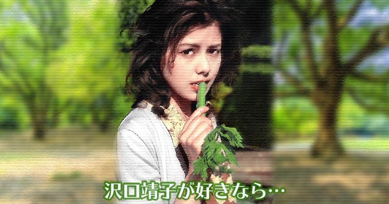 沢口靖子のことが好きなら身支度から整えよう