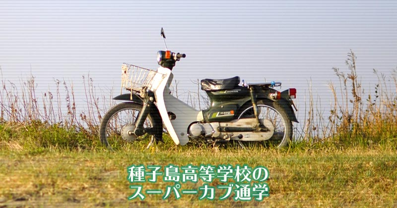 鹿児島県立種子島高等学校 スーパーカブ通学