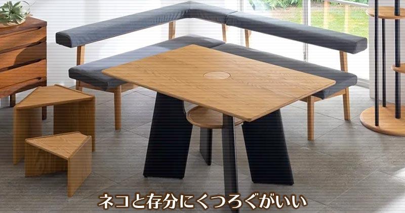 ネコとくつろぐダイニングテーブル